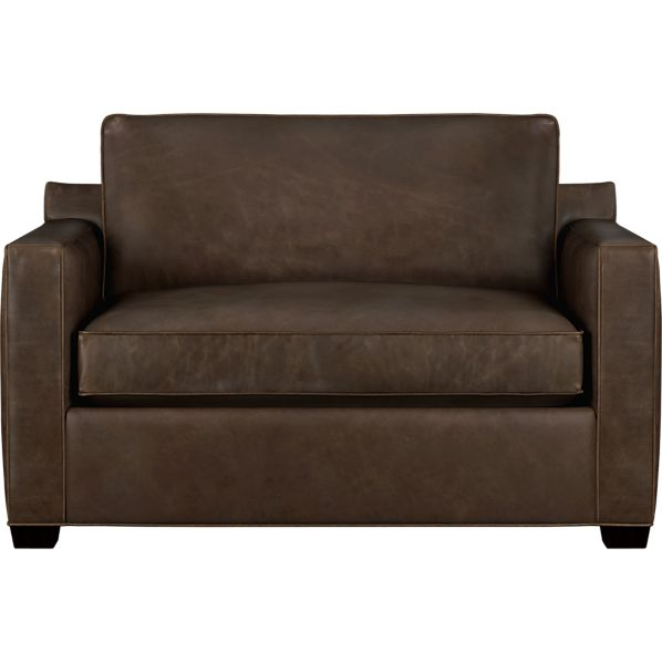 Leather Sofa With Sleeper