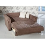 : pull out loveseat sleeper