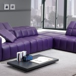 : purple sofa what colour carpet