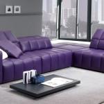 : purple sofa what colour carpet