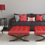 : red and black couch pillows