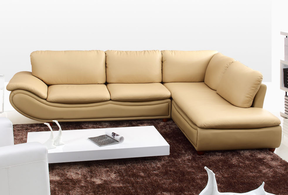 Sectional Sofa Pull Out Sleeper