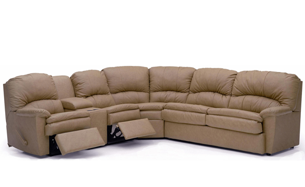 Sectional Sofa Sleepers Leather