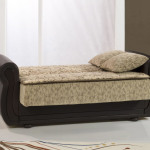 : sectional sofa with sleeper bed