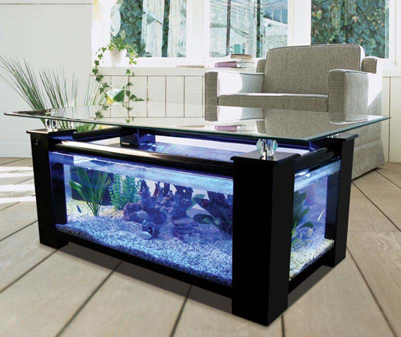 Coffee Table Fish Tank