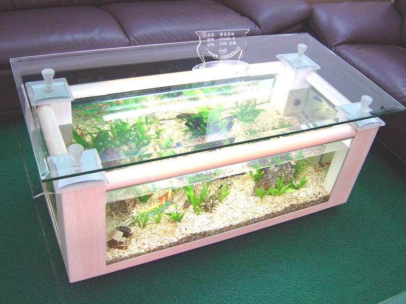 Coffee Table Fish Tanks