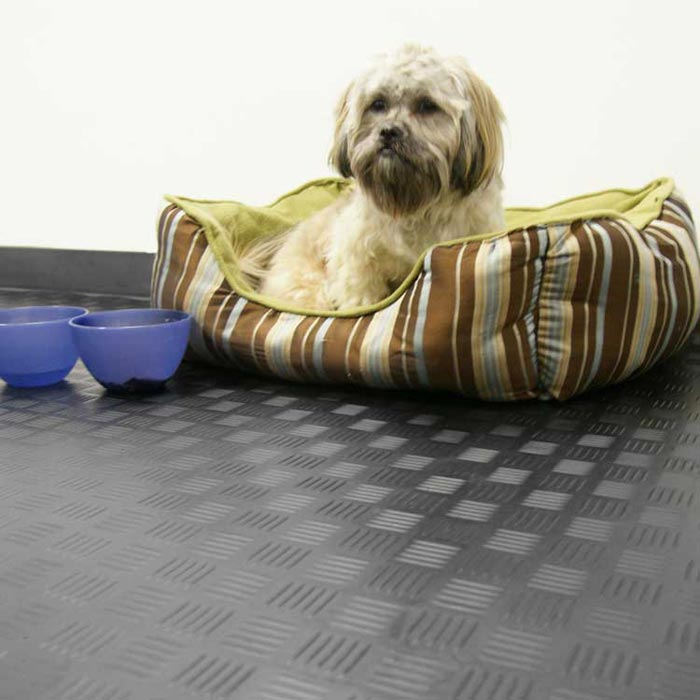 hard wearing flooring for dogs