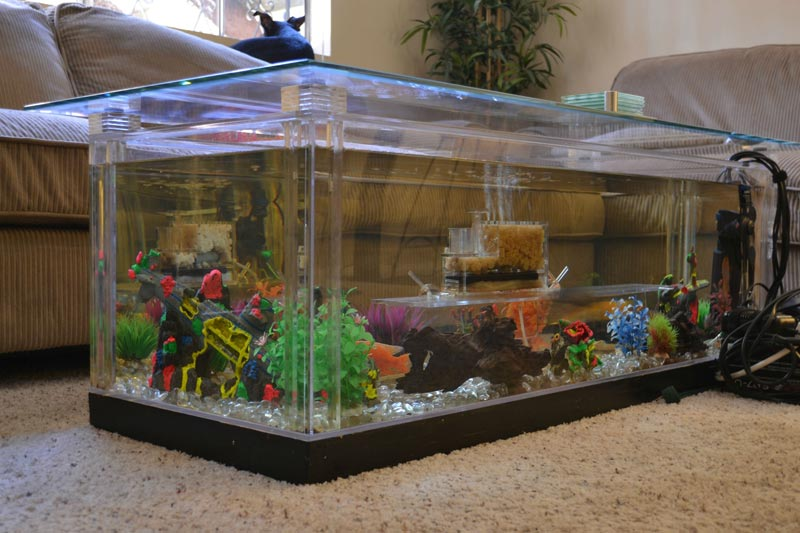 coffee table fish tank for sale uk