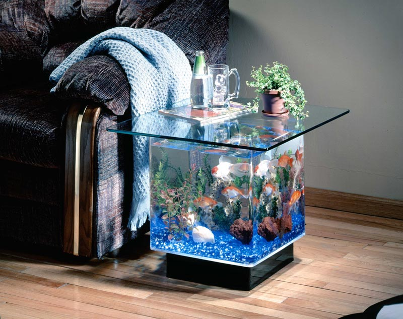 fish tank coffee tables for sale australia