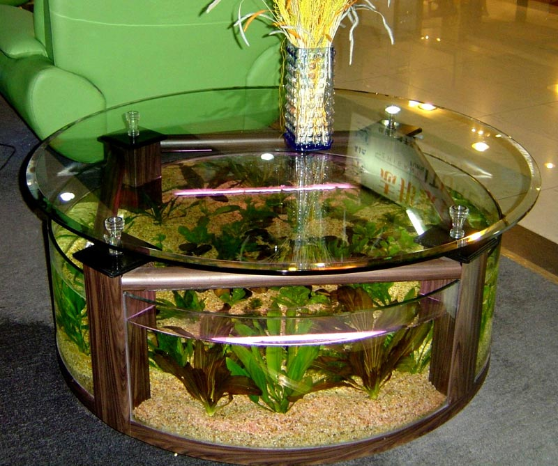 Coffee Table Fish Tanks For Sale