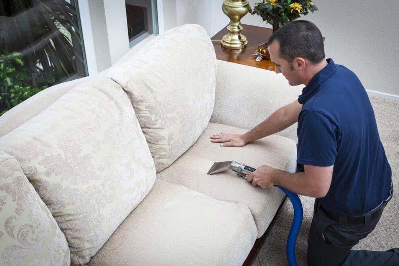 Sofa Upholstery Cleaner