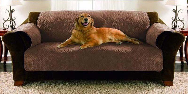 Sofa Covers At Kmart