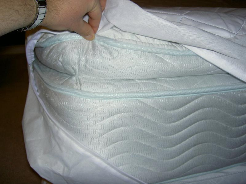 Tempurpedic Bed Bugs