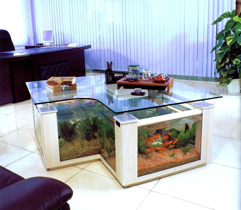coffee table fish tank for sale cape town
