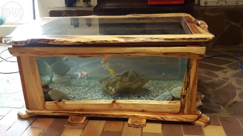 coffee table fish tank for sale south africa